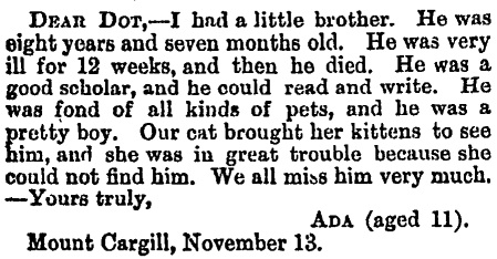 Otago Witness , Issue 1828, 3 December 1886, Page 32Courtesy of Papers Past