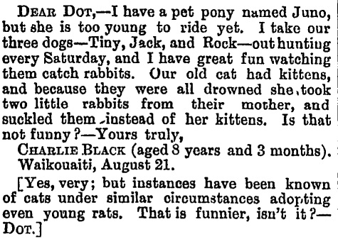 Otago Witness , 31 August 1888, Page 34Courtesy of Papers Past