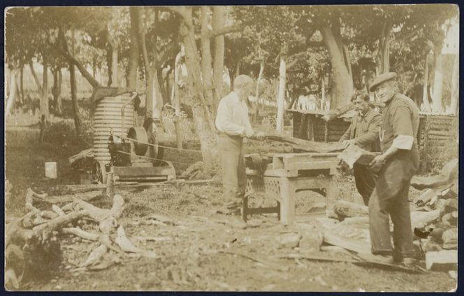 Noel Cox, George Rewai, and Felix Cox, cutting firewood, Chatham Islands. Guest, Ernest Matthias Capewell, 1873/1874-1957 : Photographs of the Chatham Islands. Ref: PAColl-4872-1-19. Alexander Turnbull Library, Wellington, New Zealand. http://natlib.govt.nz/records/23009499