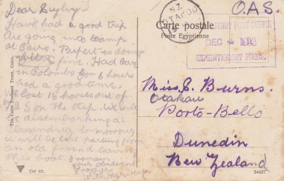 Back of Postcard - Egypt, December 1914 Lemuel Lyes Collection